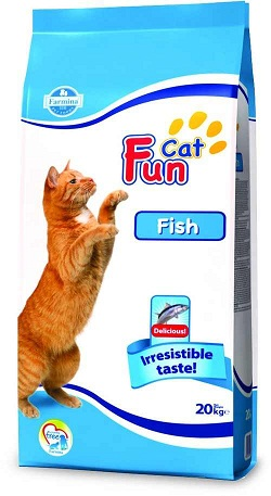 Fun Cat Fish